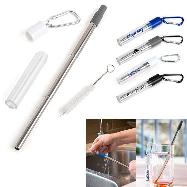 Stainless Steel Straw Retractable with cleaning brush carabiner case